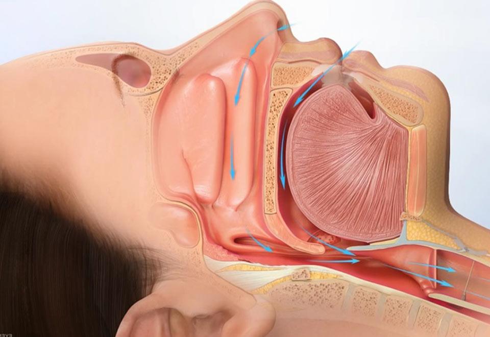Sleep Apnea Treatment – ENTandSleep